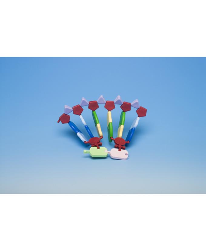 Sinteza proteina (set) AMRNA-12_